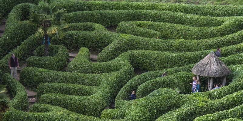 11 Inspiring Vertical Gardens