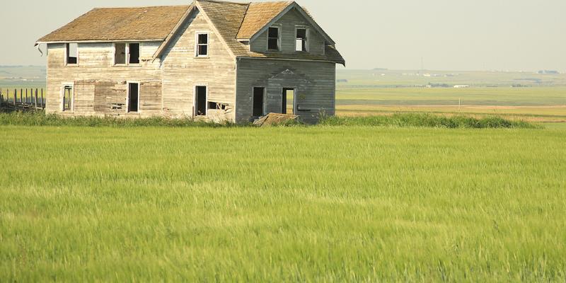 Contemporary Farmhouse Vineyard in Minnesota